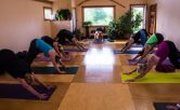 Restorative Yoga at Junction Center in Door County, Downward Dog