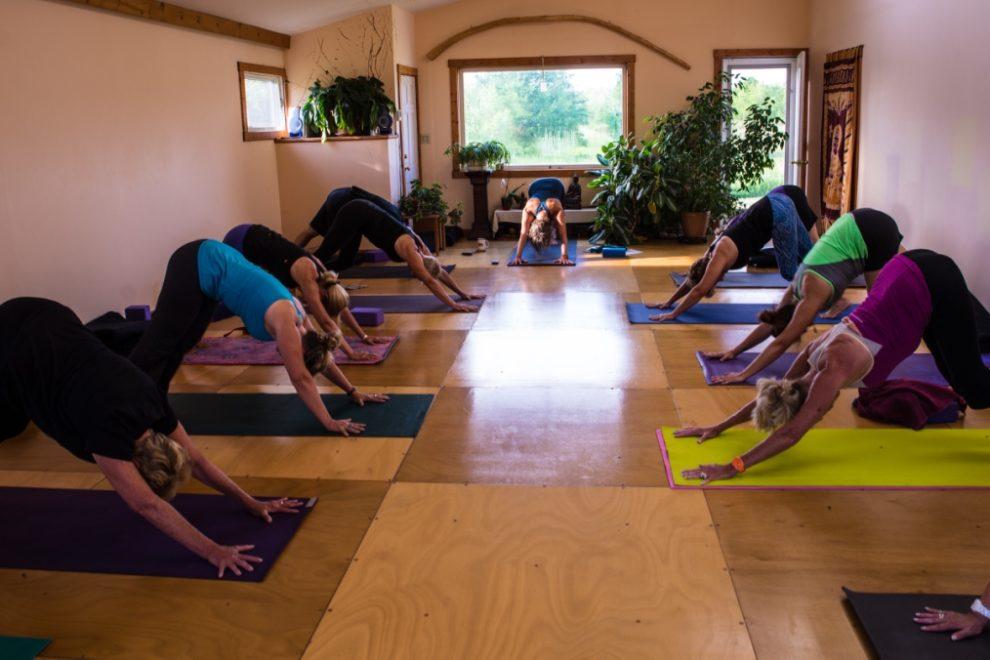 Restorative Yoga at Junction Center in Door County, Downward Dog